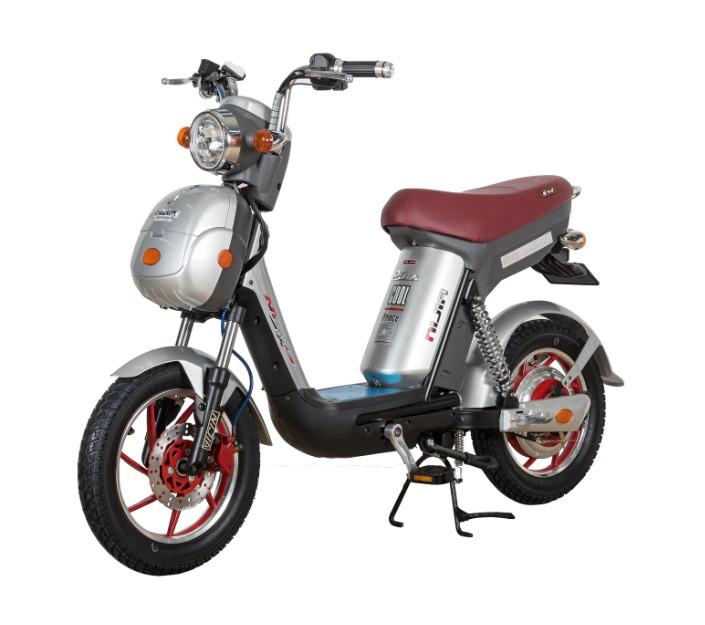 5 Nguyên nhân làm cho Ắc quy xe đạp điện Nijia nhanh bị phồng (1)